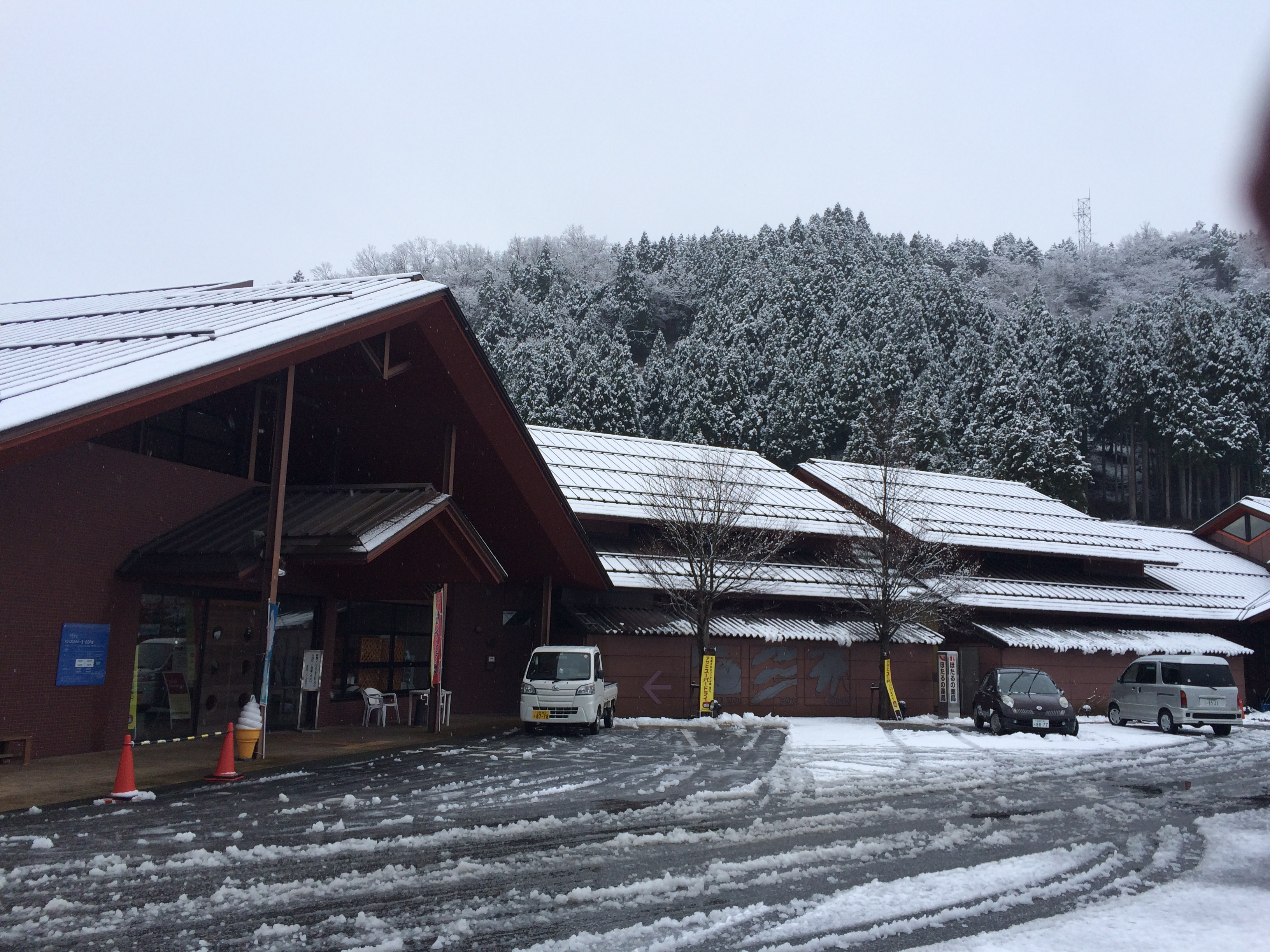 1.15雪①
